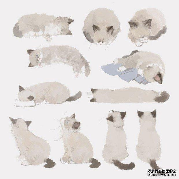 萌萌的小猫咪日系小清新插画图片