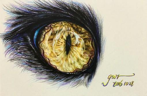用彩铅画的梦幻又唯美的动物眼睛瞳孔插画